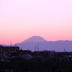 20101109_2